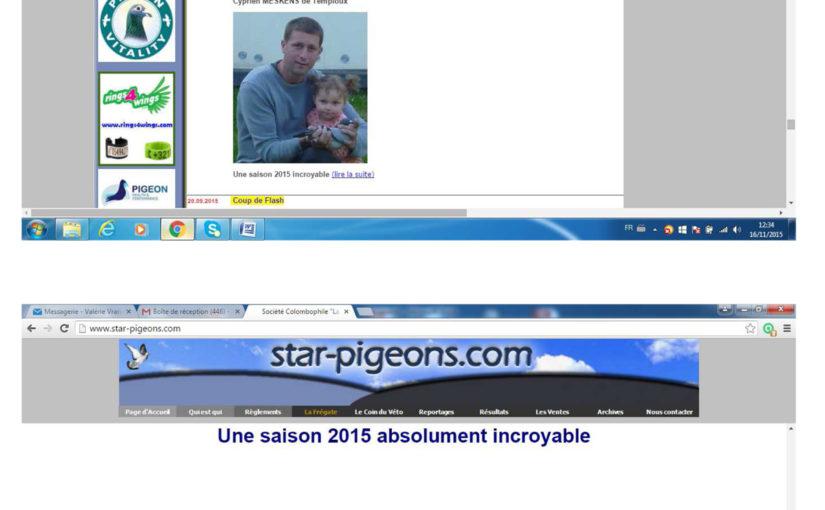 Star-pigeons.com